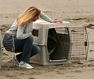 karen-cages-pelican-release 2